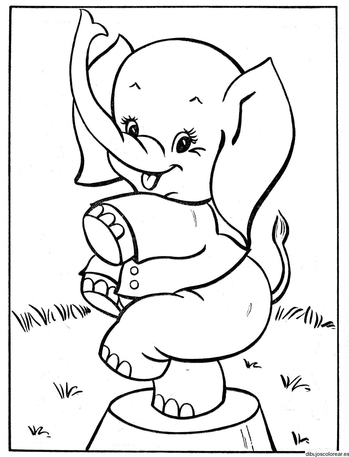 Dibujo de un elefante de circo  Dibujos para Colorear