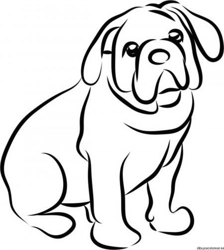 Dibujos-para-colorear-de-animales-23