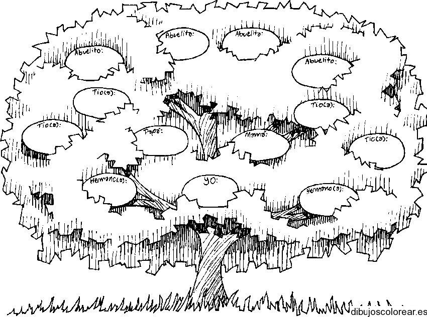 El árbol genealógico - Historia de los antepasados
