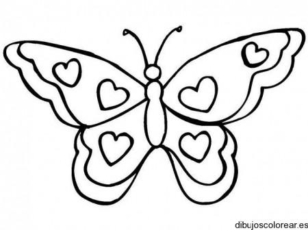 coloriage-papillon-24_gif-1