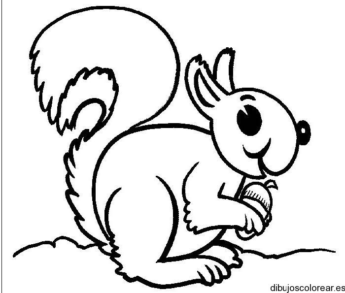 Dibujo De Una Pequeña Ardilla Saboreando Nuez