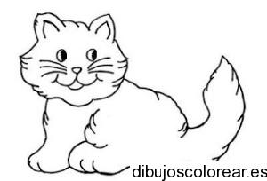 desenhos-para-colorir-gato-desenhos-de-animais-para-colorir1