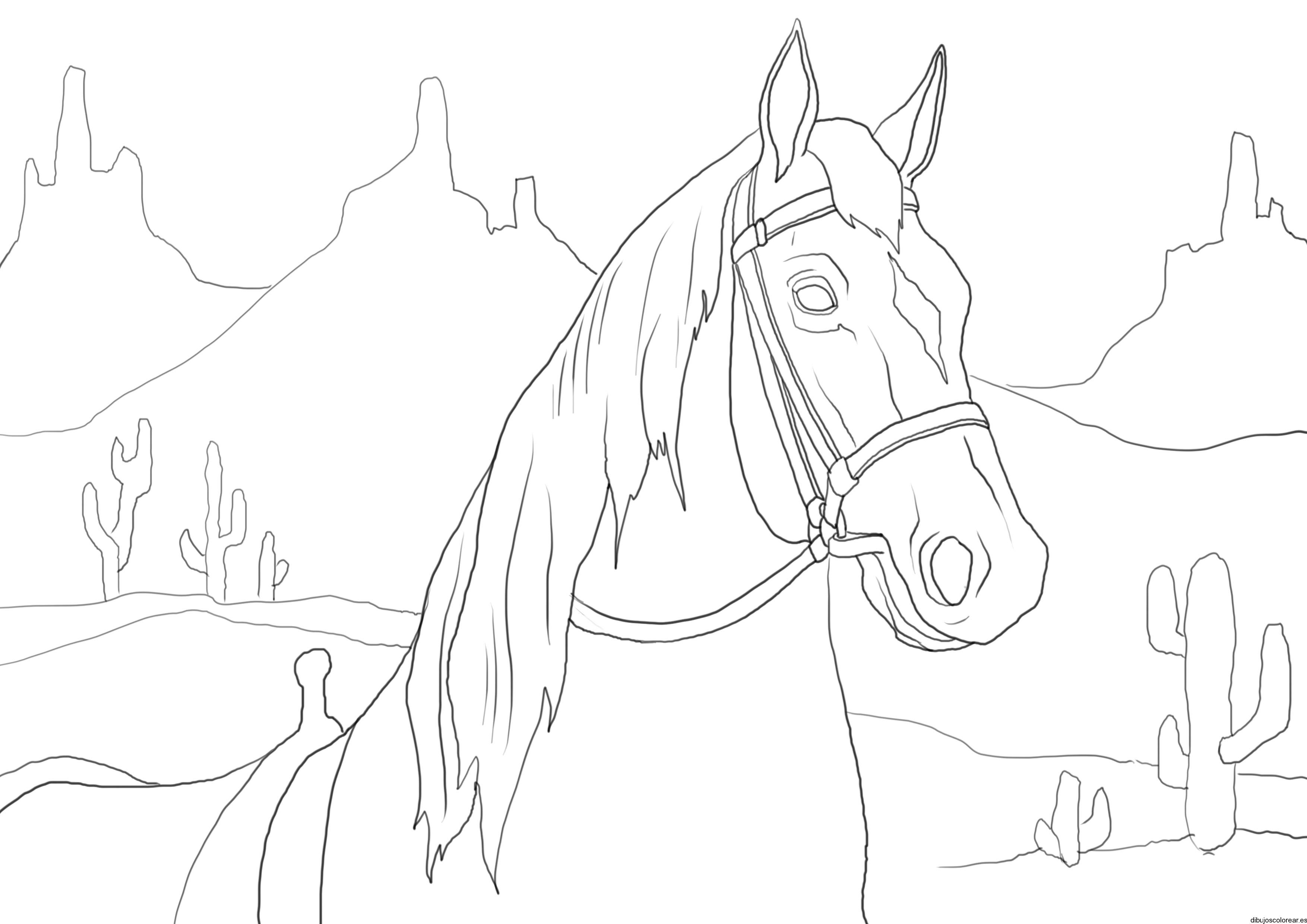 Dibujo de un caballo en trote