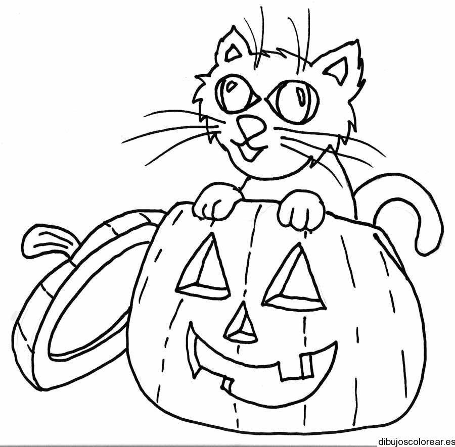 Dibujo de un gato y una calabaza