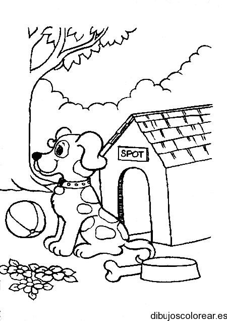 Perro en su casa