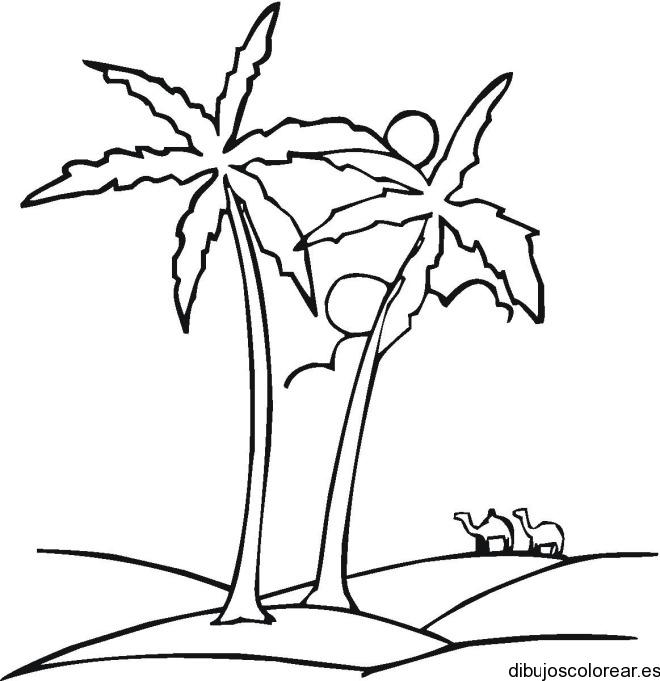 Dibujo de un par de palmeras