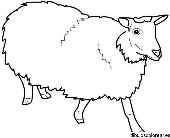 Antifaz de oveja - Imagui