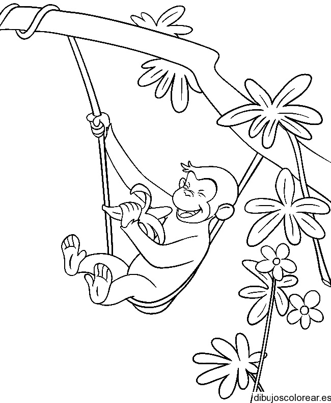 dibujo de chango Colouring Pages