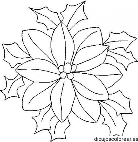 flor de navidad para colorear - Selo.yogawithjo.co