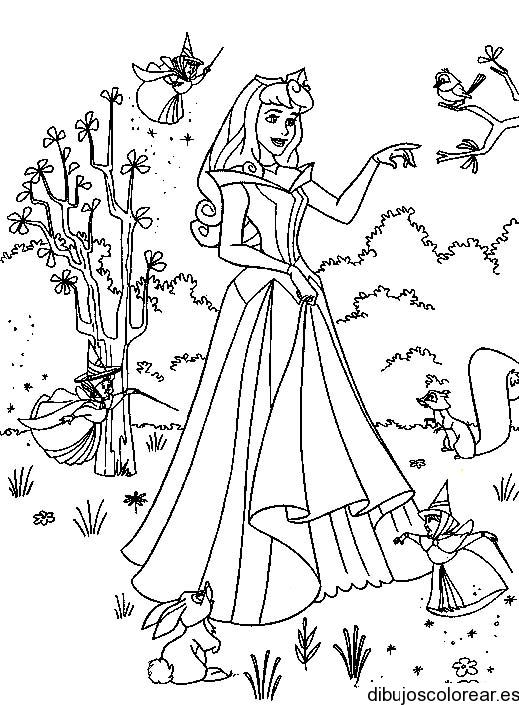 Dibujo de Bella con las hadas