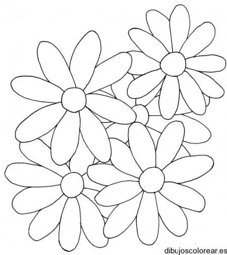 dibujos_para_colorear_gratis (44)