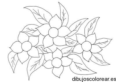 Dibujo de pequeas margaritas  Dibujos para Colorear
