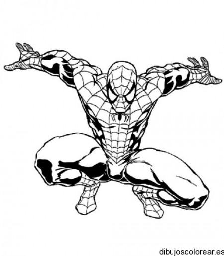 dibujos_para_colorear_gratis (88)