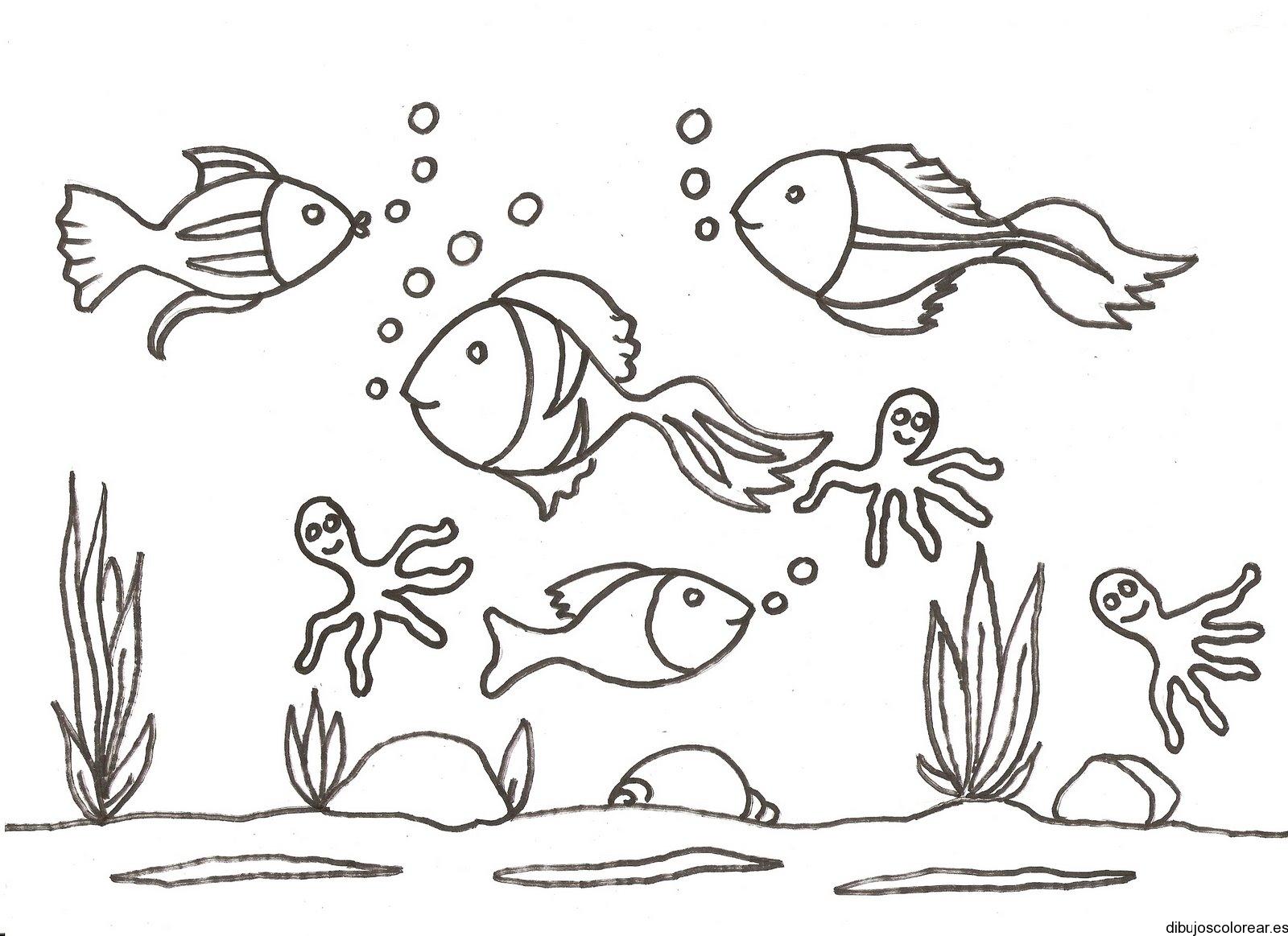 Dibujo de peces y pulpos  Dibujos para Colorear