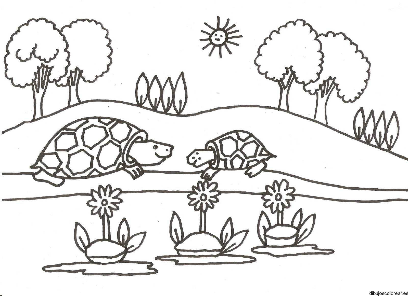 galapagos coloring pages - photo#34