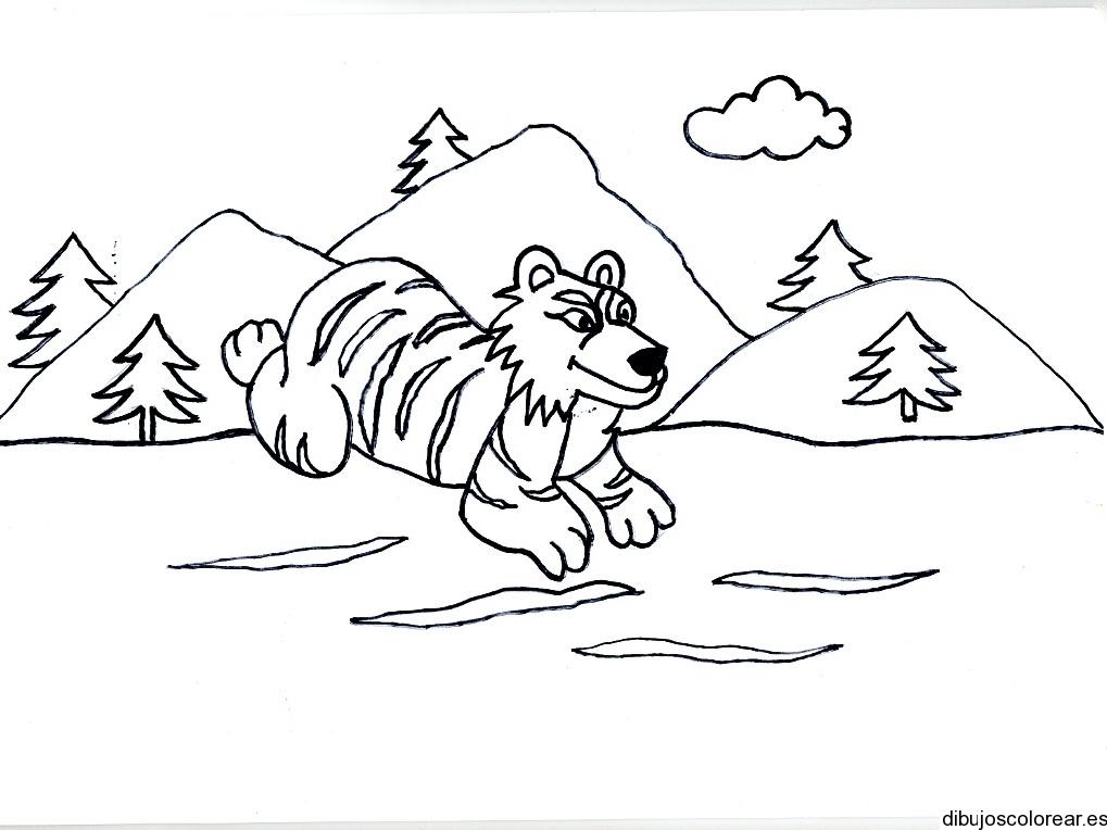 Dibujo De Un Tigre Corriendo En Las Montanas