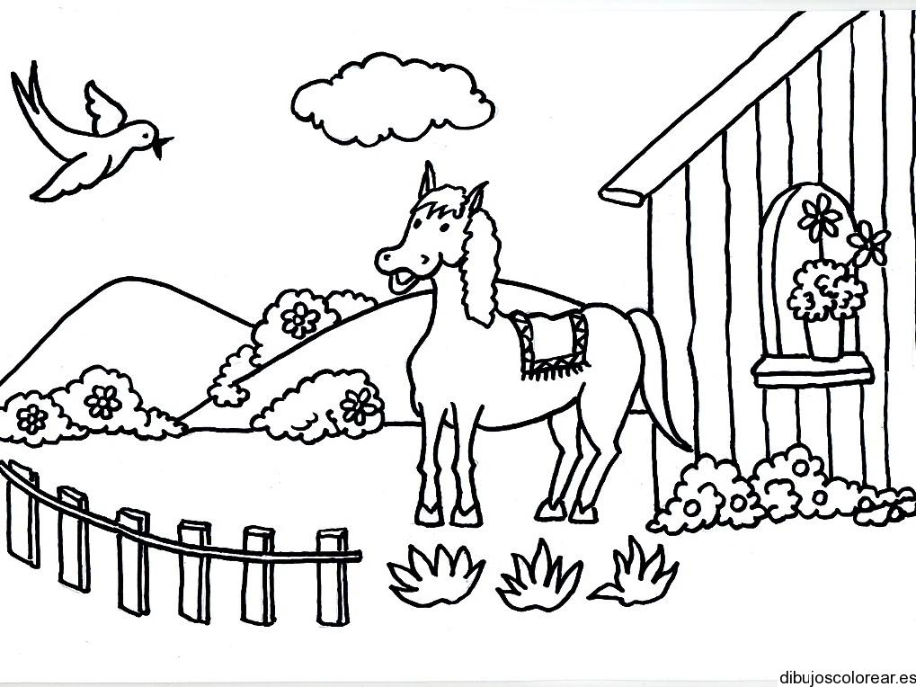 Dibujos De Caballos Bebes Para Colorear: Dibujos Para Colorear
