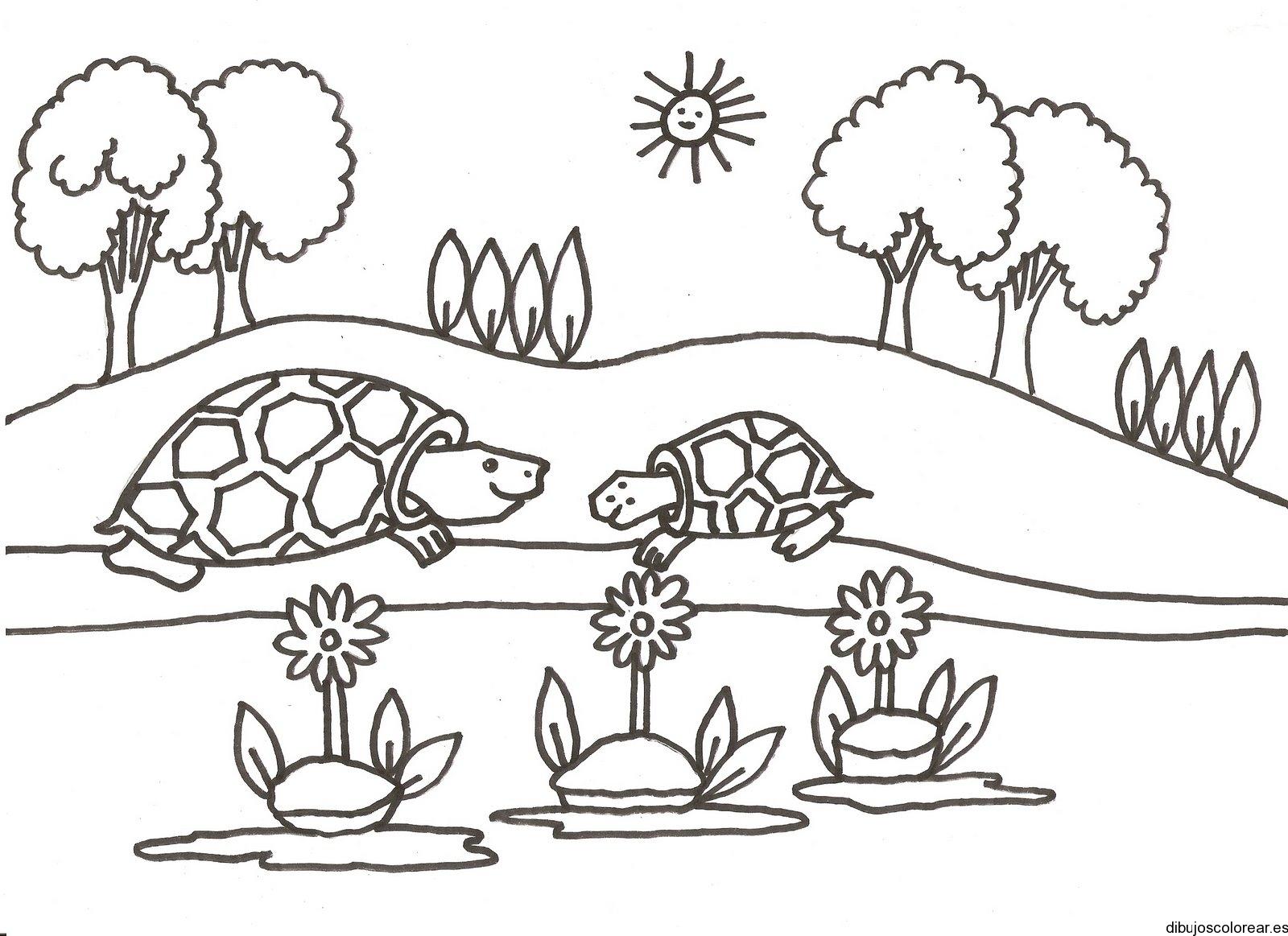 dibujo de dos tortugas charlando