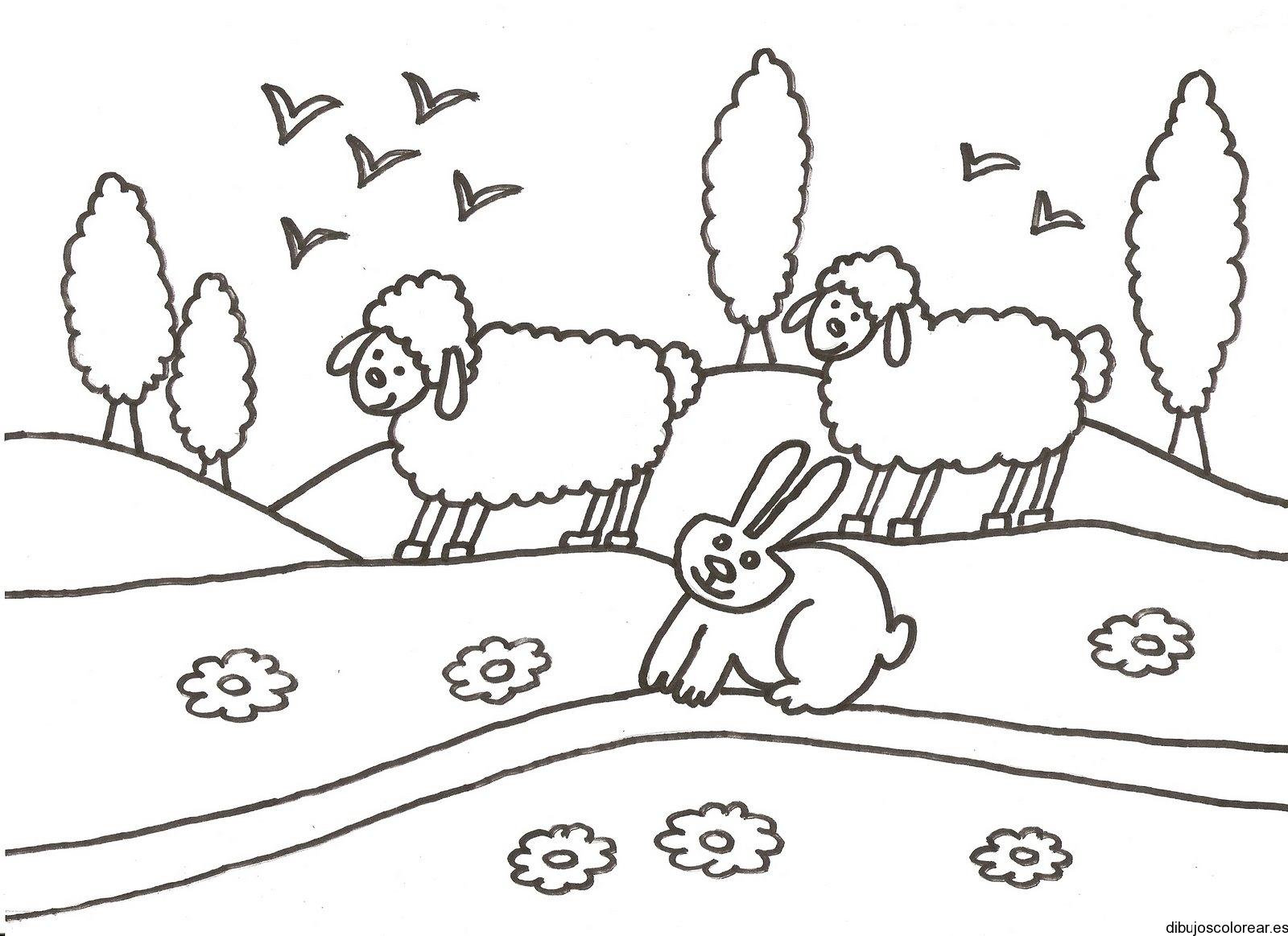 Dibujo de dos ovejas y un conejo jugando