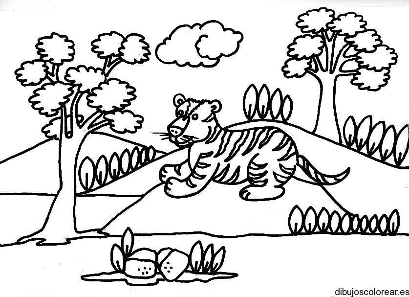 Dibujo de un tigre entre árboles