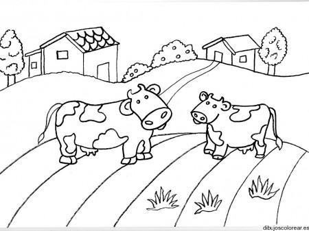 Dibujo De Una Pareja De Vacas En El Camino