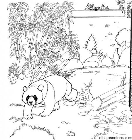 Dibujo de un oso panda en el bosque  Dibujos para Colorear