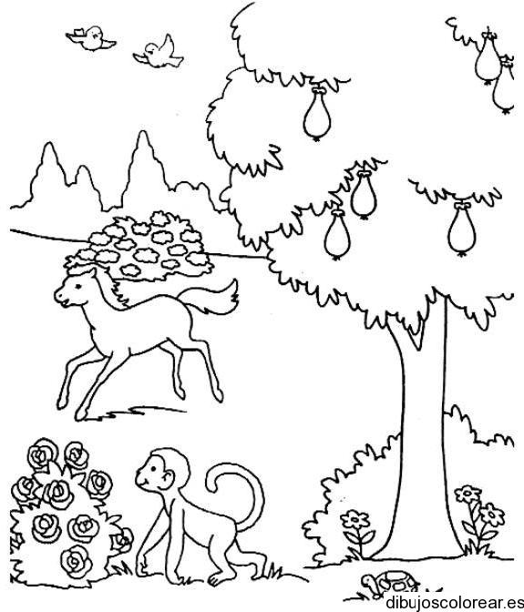 Dibujo De Animales En El Bosque