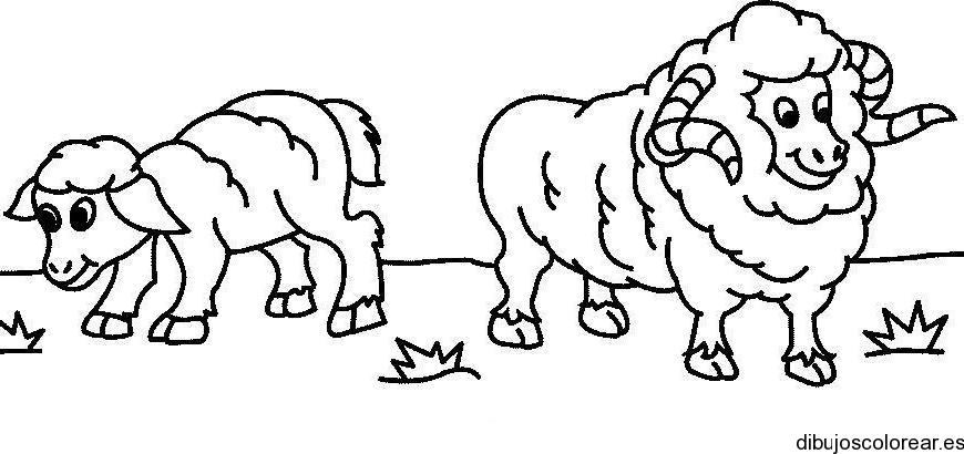 Dibujo de casas y ovejas