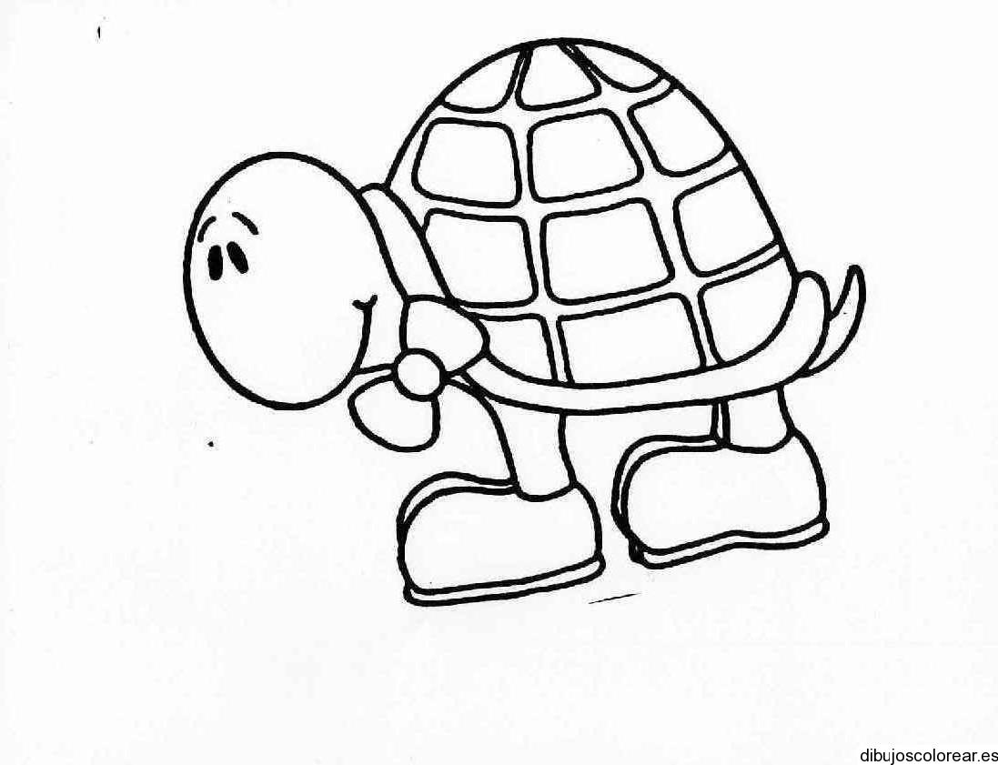 Dibujo de una tortuga en el jardín