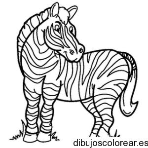 desenhos-para-colorir-zebra-desenhos-para-colorir