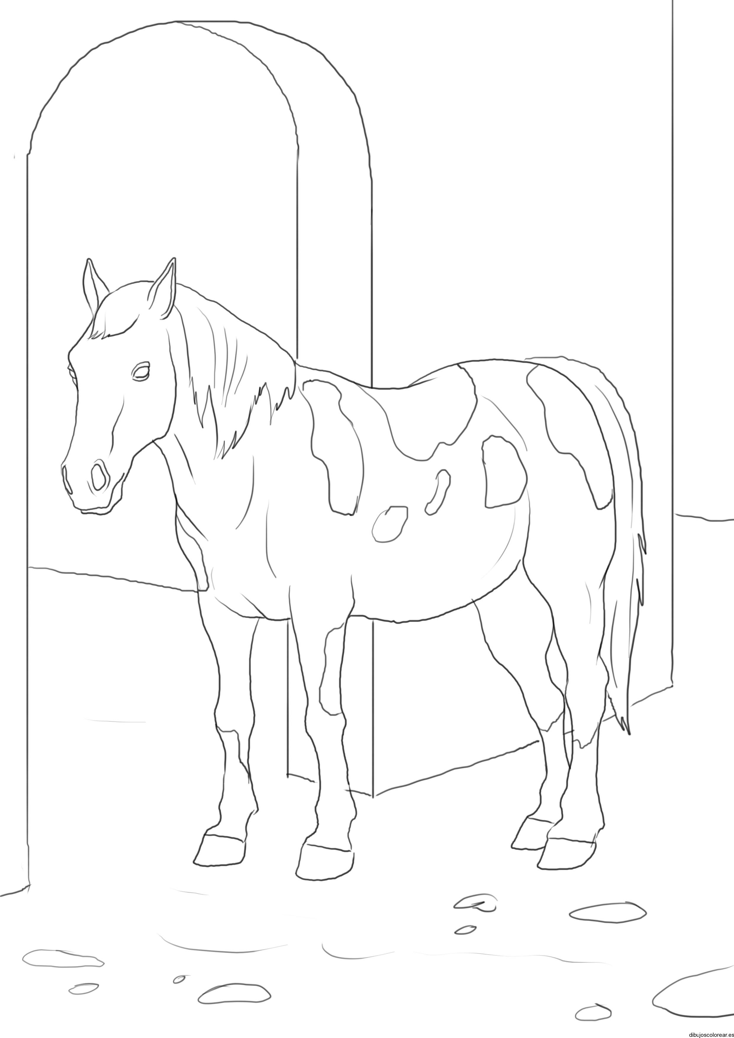 Dibujo De Un Caballo En Un Establo
