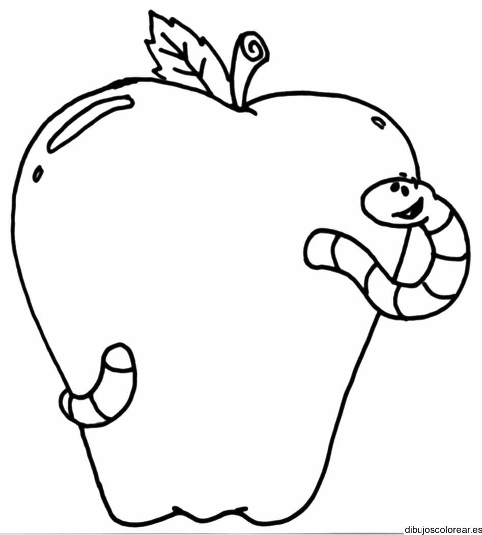 Dibujo de una manzana partida en dos