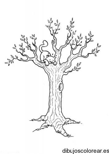 Dibujo de un gato sobre una rama del árbol
