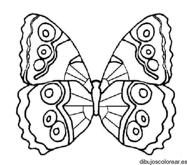 Dibujo de una mariposa monarca pequeña