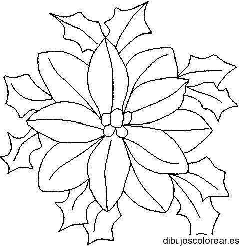 Dibujo de una flor de pascua