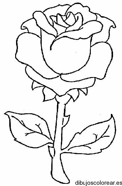 dibujos para colorear gratis (40)