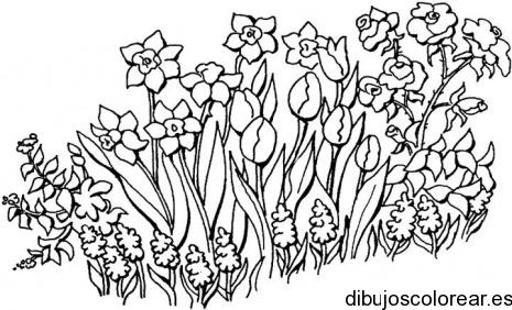 Dibujos de Primavera