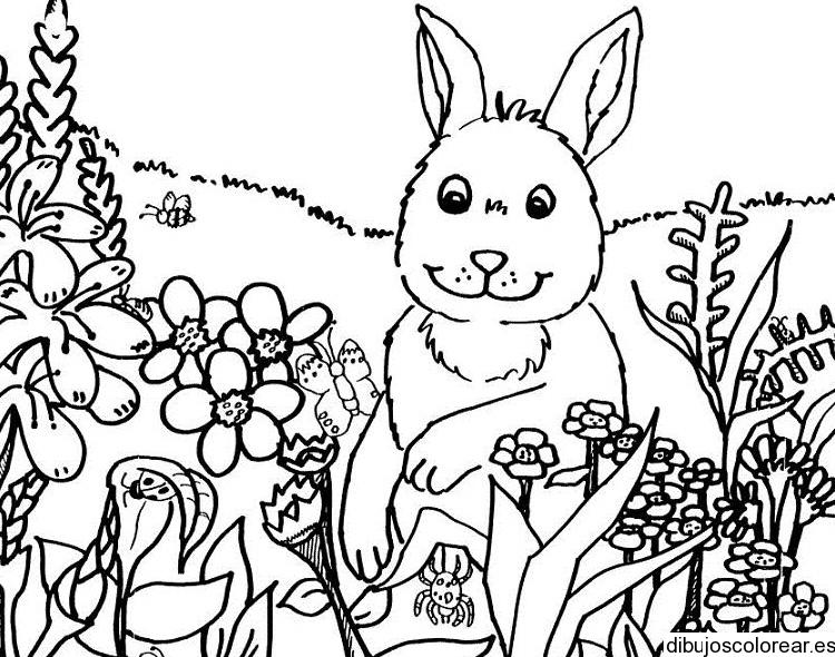 Dibujo de las mascotas en el jardín