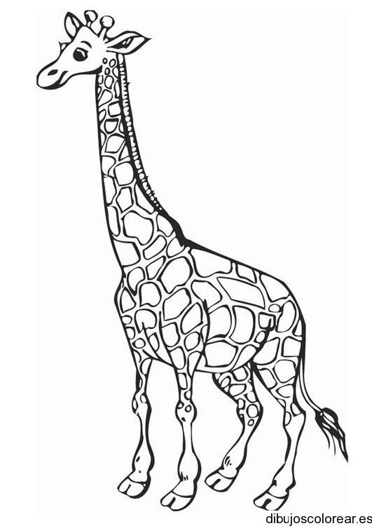 Dibujo de jirafa mamá y jirafa hija