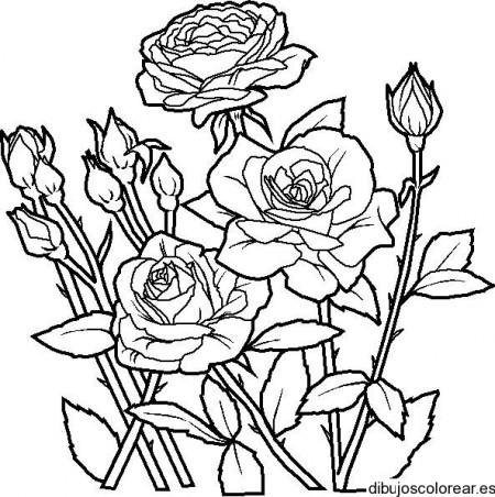 dibujos_para_colorear (39)