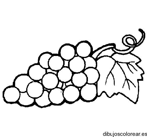 Dibujon de racimo de uvas