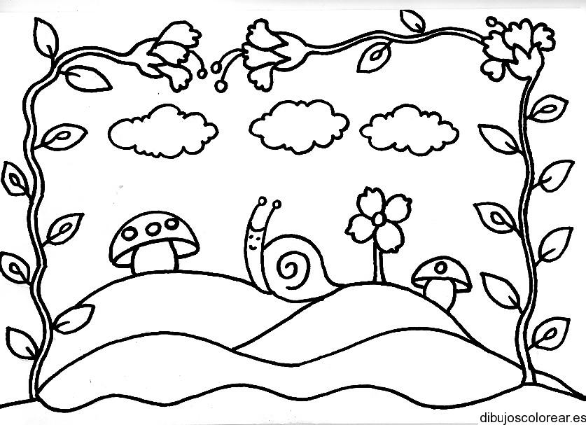 Dibujo de una enredadera de hojas