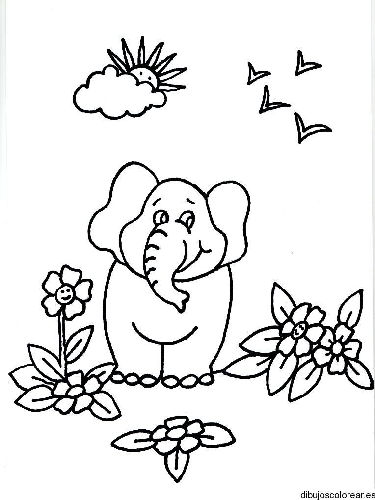 Dibujo De Un Elefante Entre El Jardin