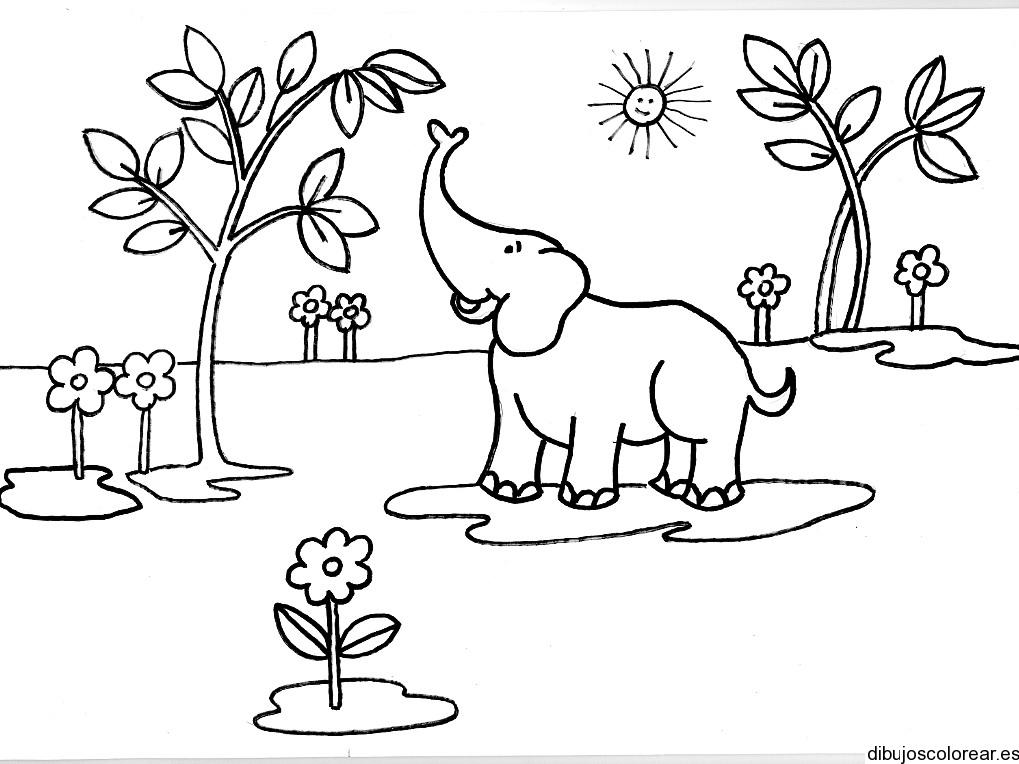 Dibujo De Un Elefante Comiendo Hojas